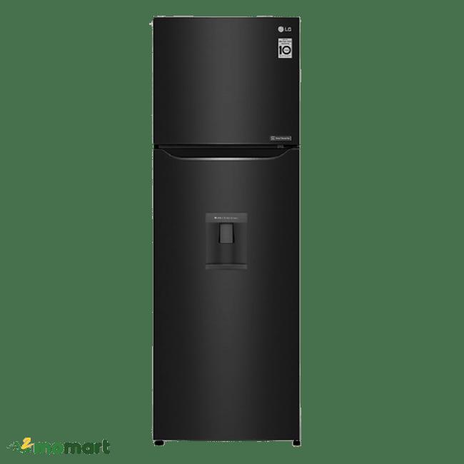 Tủ Lạnh Inverter LG GN-D255BL chụp trực diện