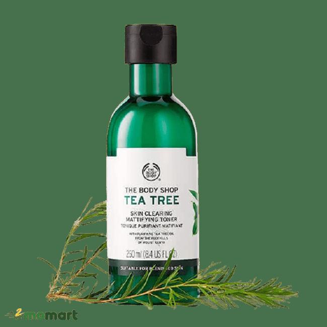 Thành phần tràm trà của The Body Shop Tea Tree Skin Clearing Toner