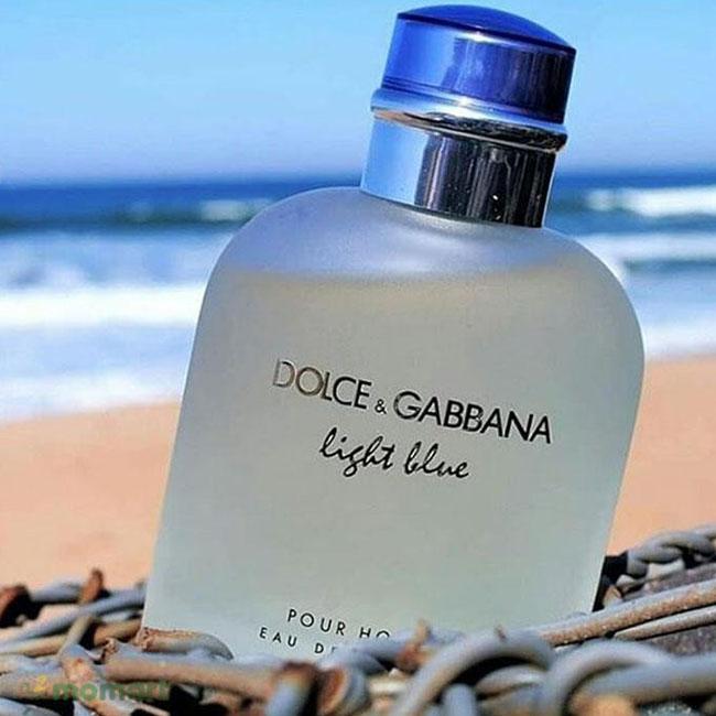 D&G Light Blue Pour Homme thích hợp cho mùa hè