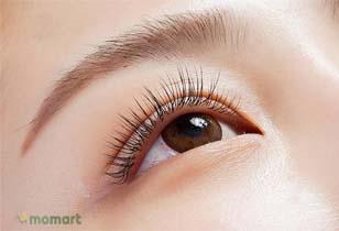Mascara dài mi đến từ thương hiệu nổi tiếng được tin dùng